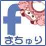 FBまちゅり